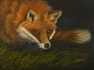 C Ciancio, Fox on Scratchboard