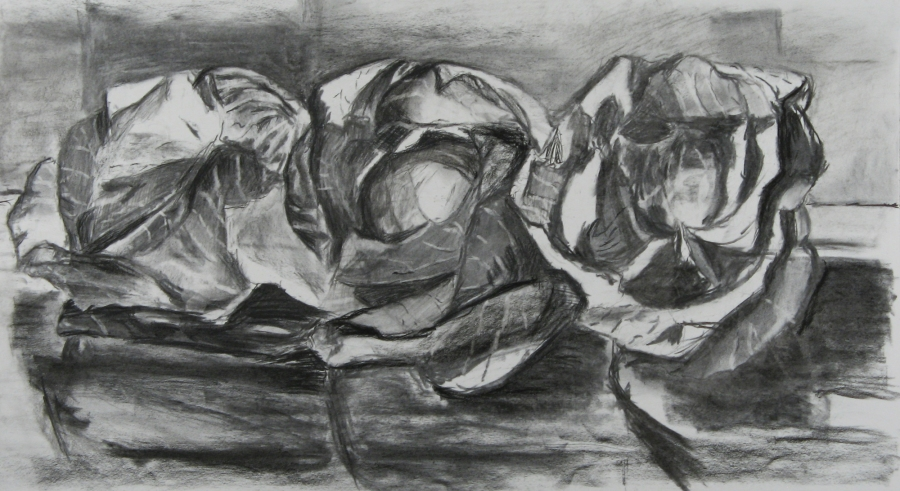 Margulies. One Cabbage, Three Poses. 20 X 32.jpg