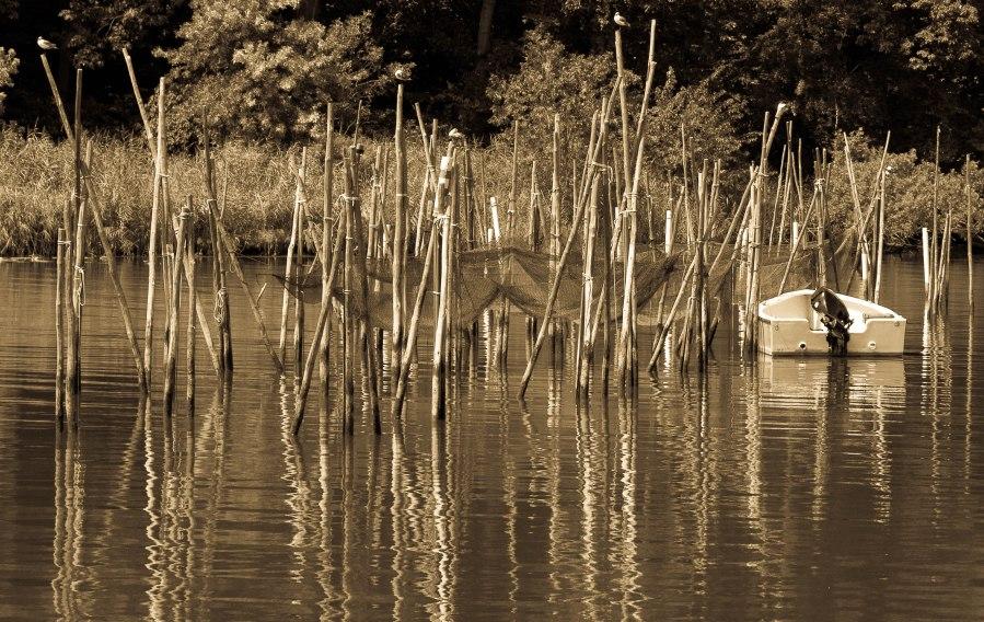 Weir Nets.jpg